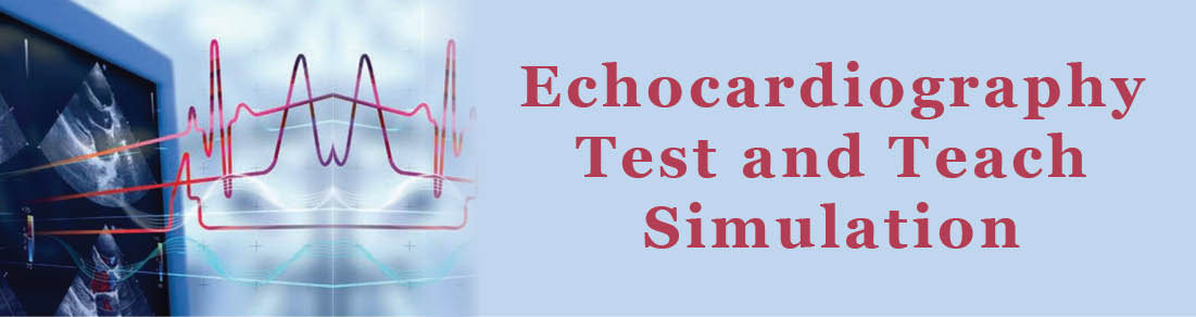 Echocardiography Test and Teach Simulation Banner