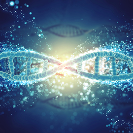 Ethical Implications of genetic Testing and Genetic Research Banner