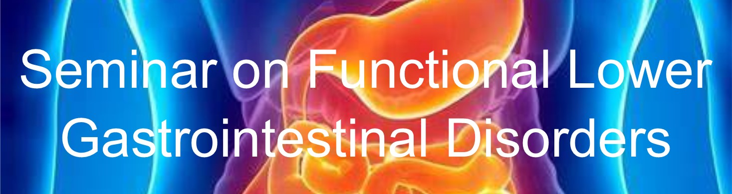 Seminar on Functional Lower Gastrointestinal Disorders Banner