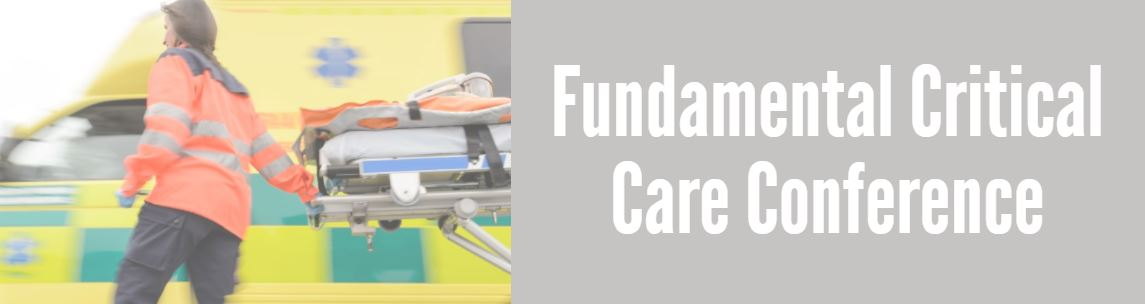 Fundamental Critical Care Support Banner