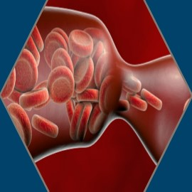 Venous Thromboembolism (VTE) Clinical Scenarios Banner